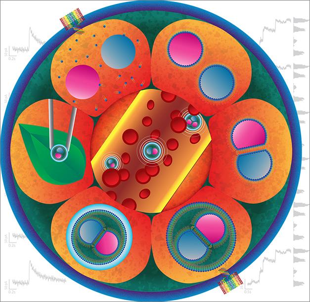Angewandte cover design eDIB (with background) (RGB)